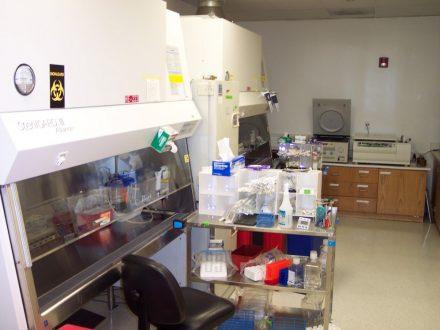 Medarex Lab Improvements 03